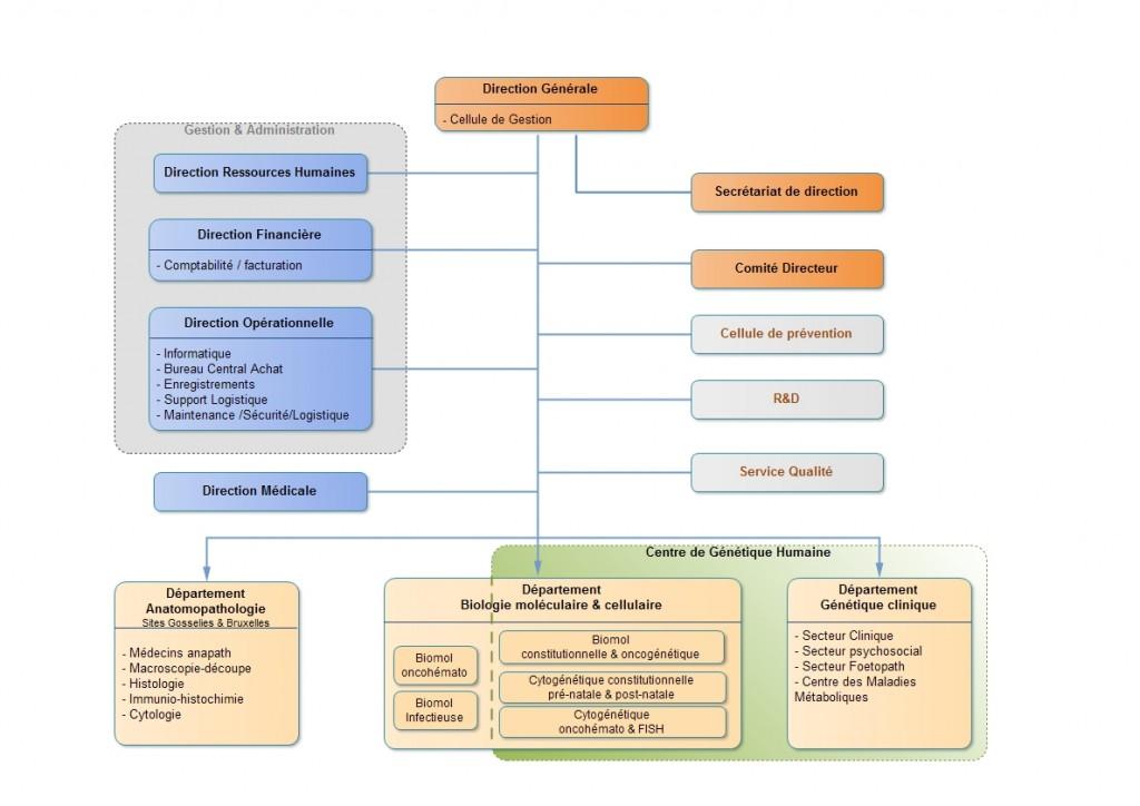 IPG-ORG-002-Organigramme structurel IPG